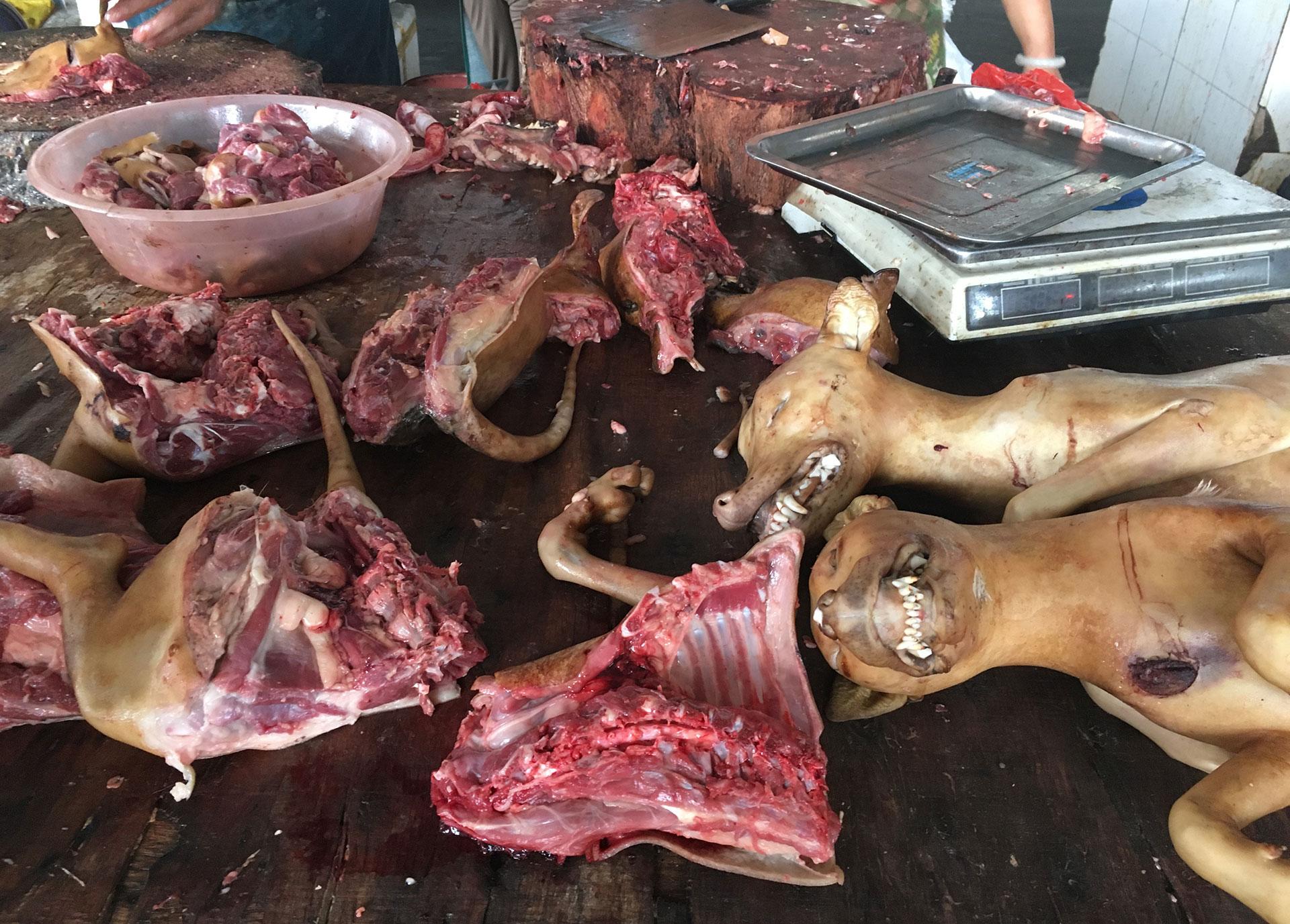 En la tradición, que data de la dinastía Ming, también se cree que la carne de perro da fuerza