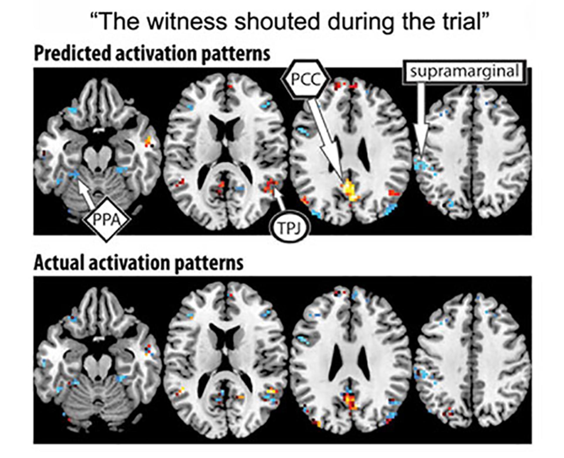 Los significados de los pensamiento son procesado por un área determinada del cerebro (Universidad Carnegie Mellon)