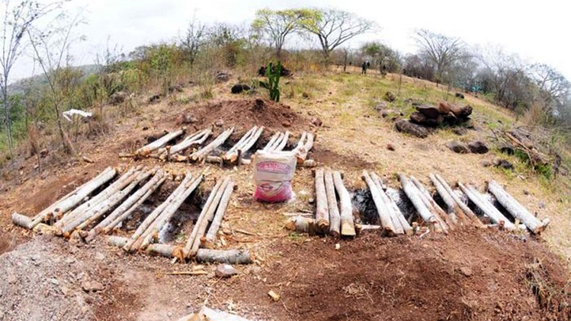 En un año, un solo colectivo encontró más de 270 cuerpos en distintas fosas clandestinas. (Foto: Archivo/Infobae)