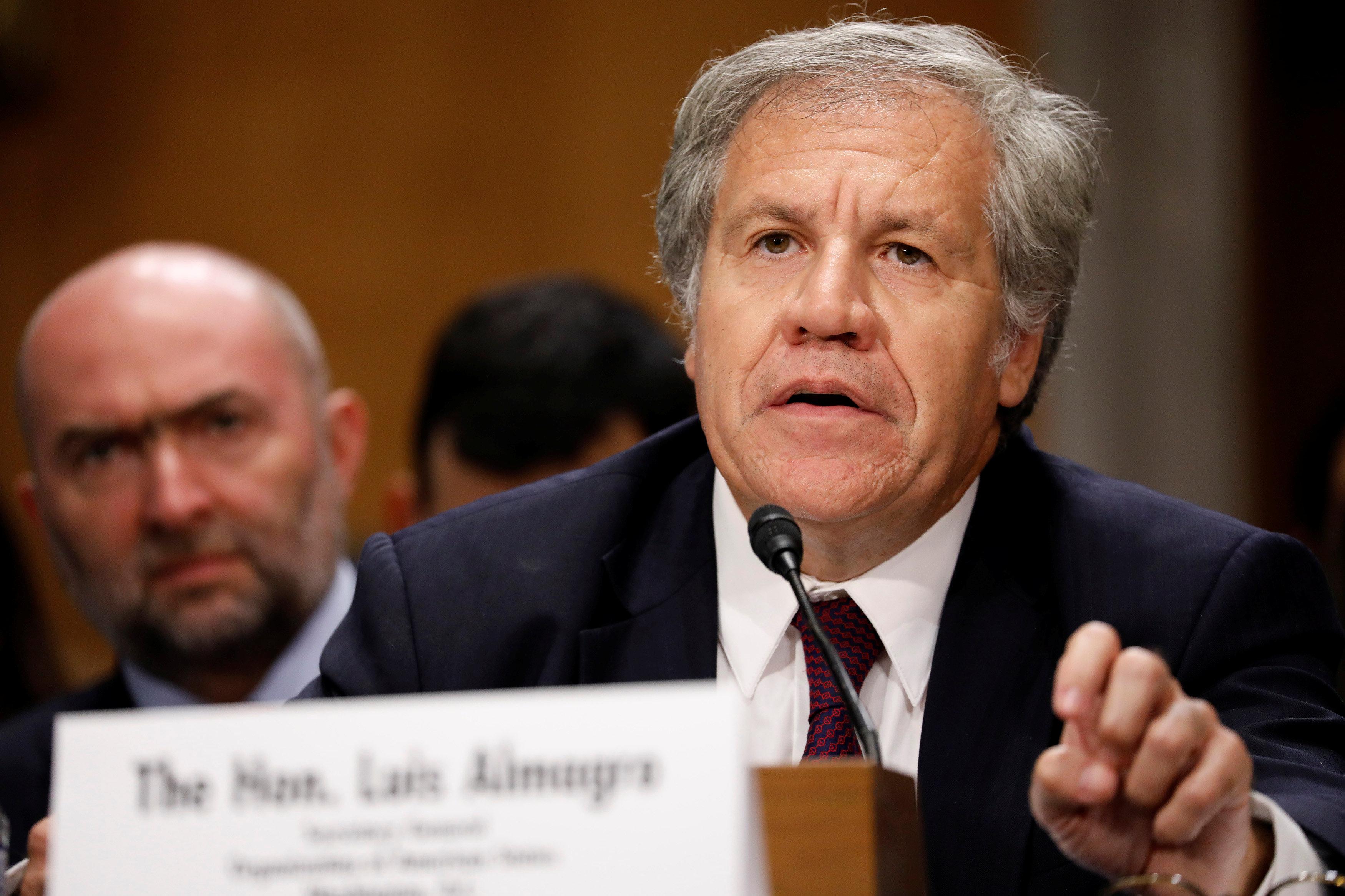 Luis Almagro, secretario general de la OEA(REUTERS/Aaron P. Bernstein)