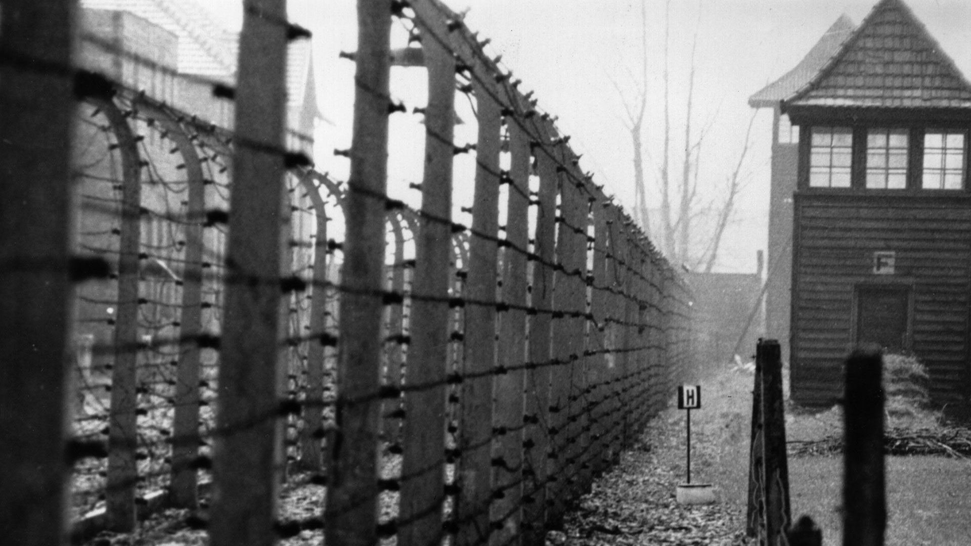 Auschwitz, ubicado en territorios polacos ocupados, fue el mayor centro de exterminio del nazismo