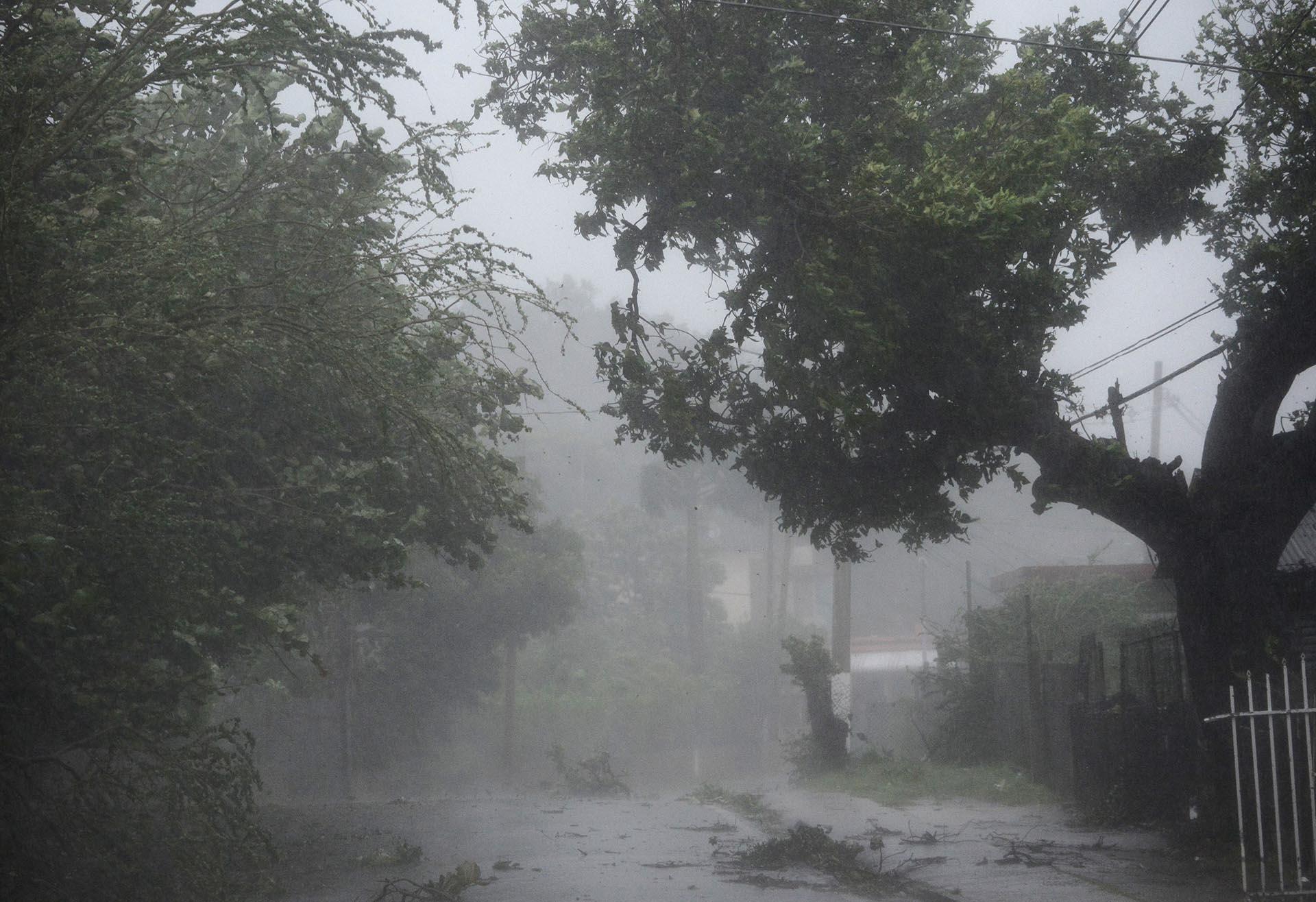 Viento y lluvia golpean las calles del barrio de Matelnillo en Fajardo, Puerto Rico (AP Photo/Carlos Giusti)