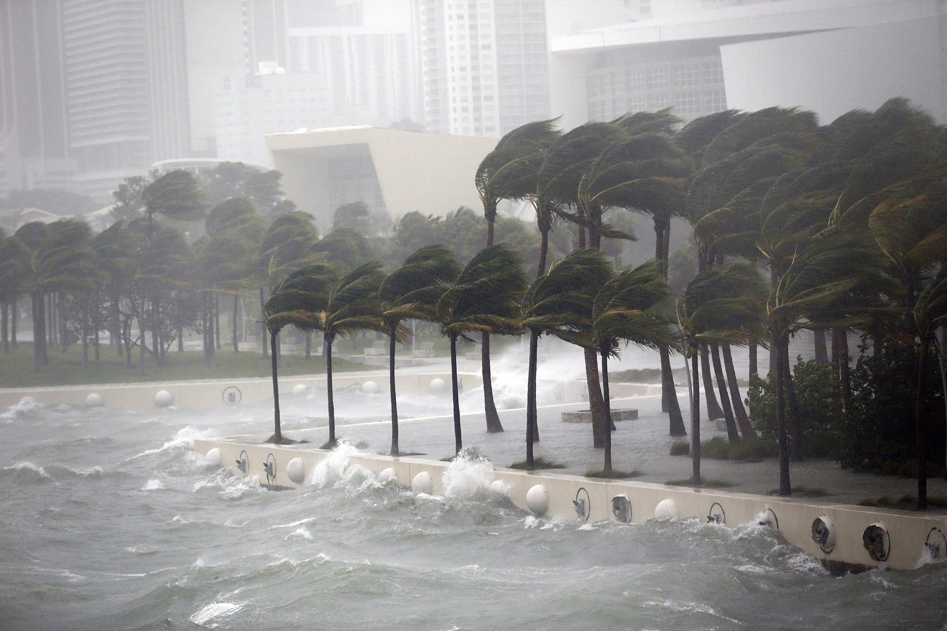 Resultado de imagen para huracan irma miami