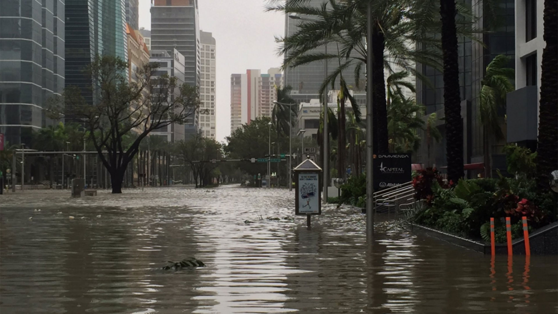 Brickell Avenue, en Miami, bajo el agua