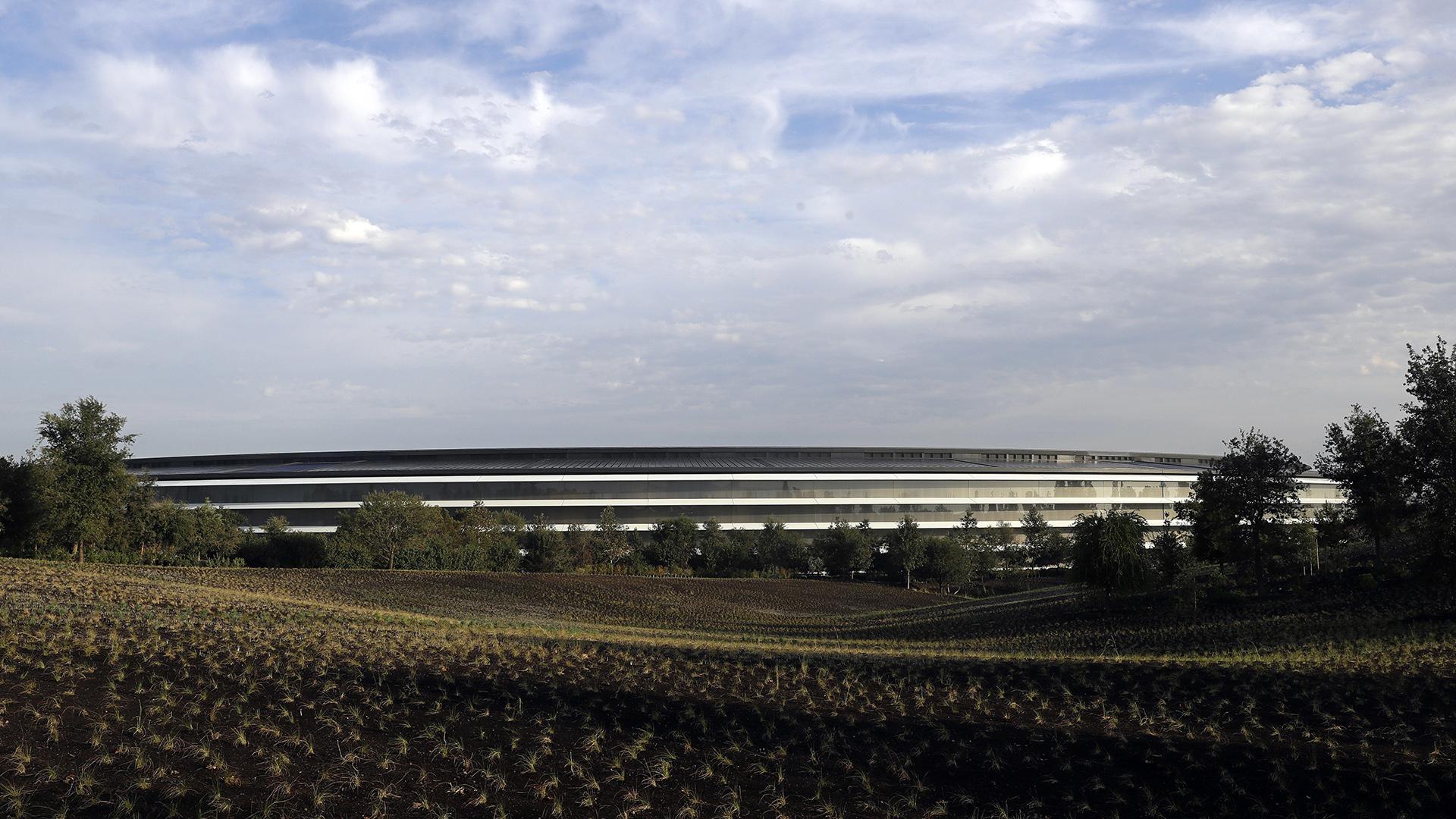 Apple Park también cuenta con un novedoso sistema de eficiencia energética y con 9.000 árboles en sus terrenos