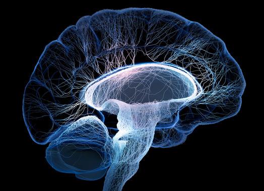 La epilepsia es una patología crónica caracterizada por la presencia de crisis convulsivas recurrentes