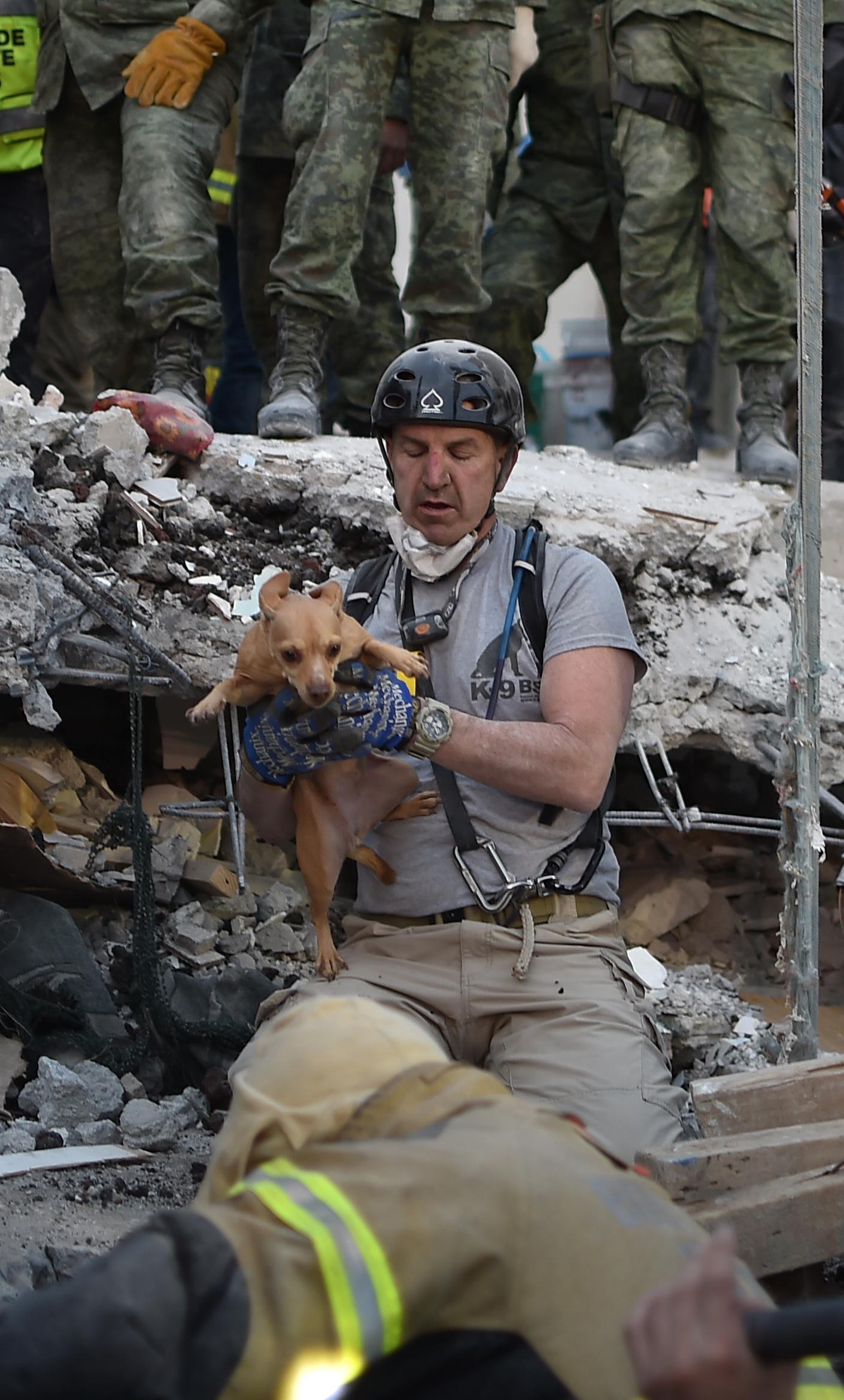 Un perro fue rescatado de las ruinas de una vivienda