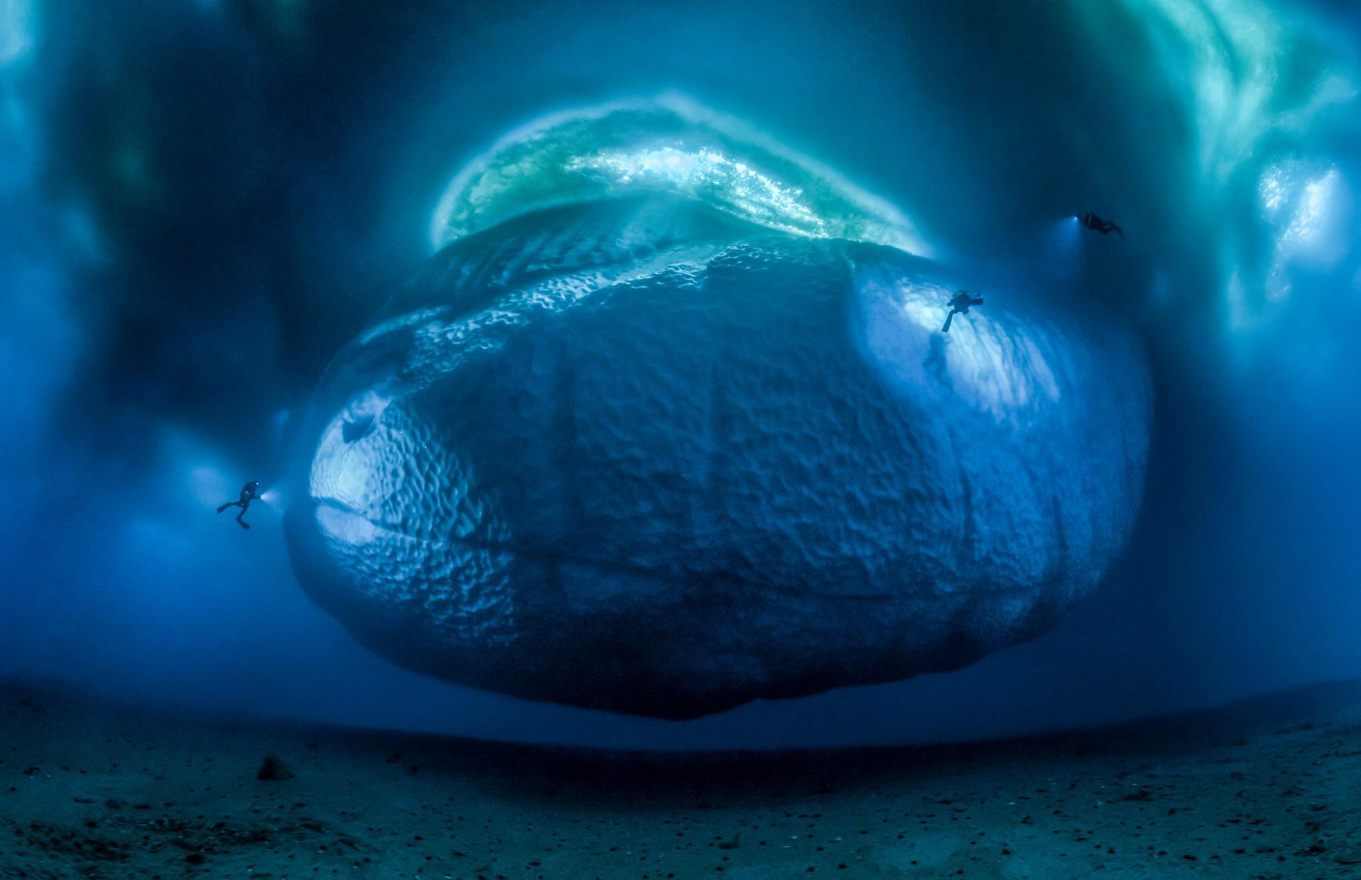 """'The Ice Monster', de Laurent Ballesta. Categoría: """"Medioambiente de la Tierra"""""""