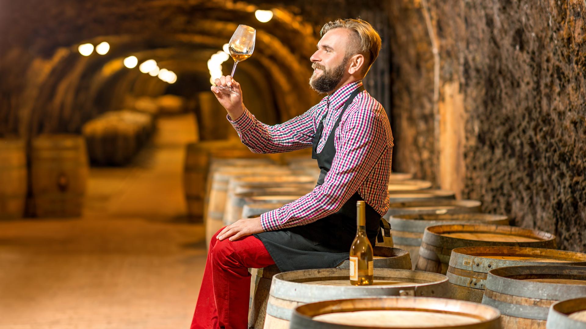 Las preguntas que hay que hacerse para saber si uno es un conocedor o un aficionado del vino (Getty)