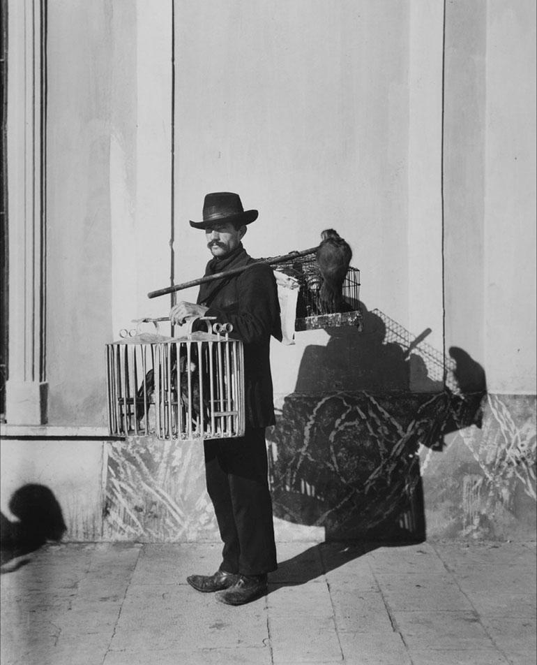 Harry Grant Olds.481. Vendedor ambulante de loras. Buenos Aires, S.A. (circa 1901)