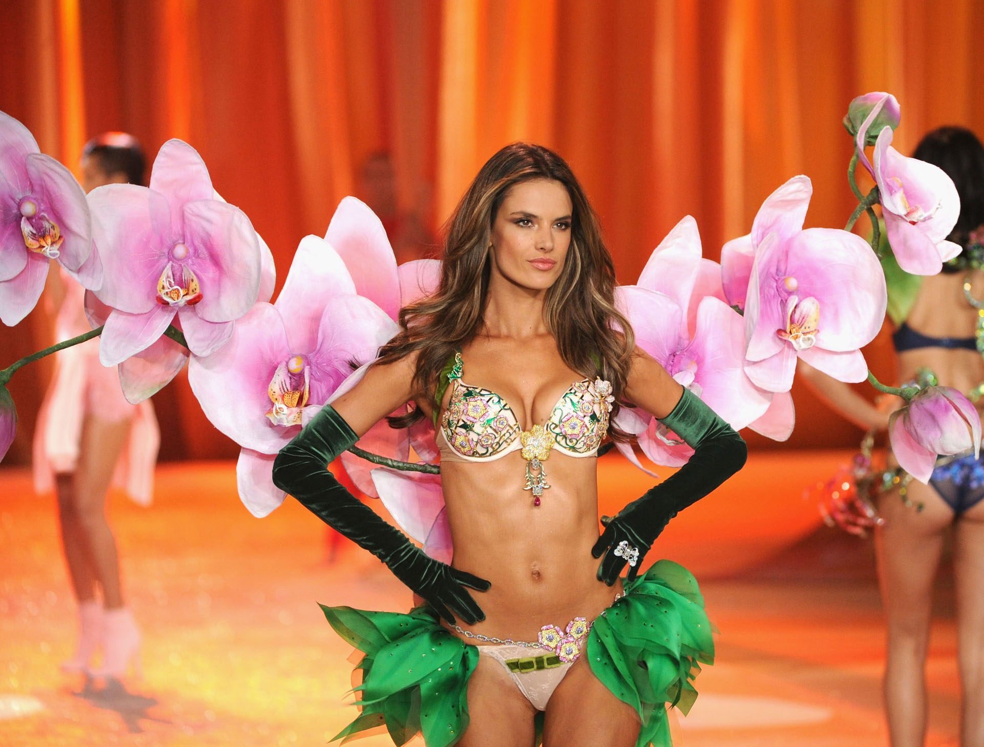 "2012: Alessandra Ambrosio was chosen for the ""Floral Fantasy Bra"" of the VSFW of the year.  Made in 5,200 precious gems including amethysts, sapphires, rubies, and pink, white and yellow diamonds of 18 carats.  In addition to the soutien, he was accompanied by a belt valued at $ 500,000.  The value of the bra: USD 2,500,000"