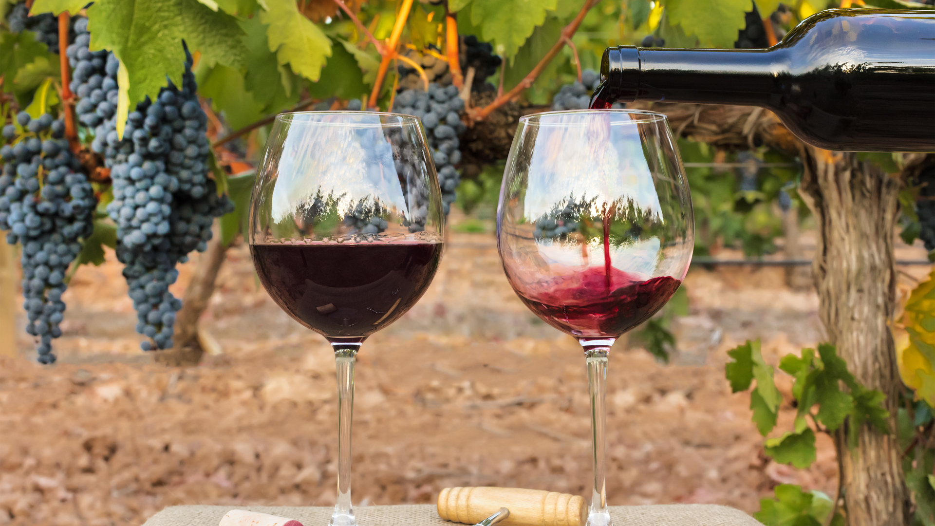 En los últimos cinco años las exportaciones de vinos cayeron 10%.