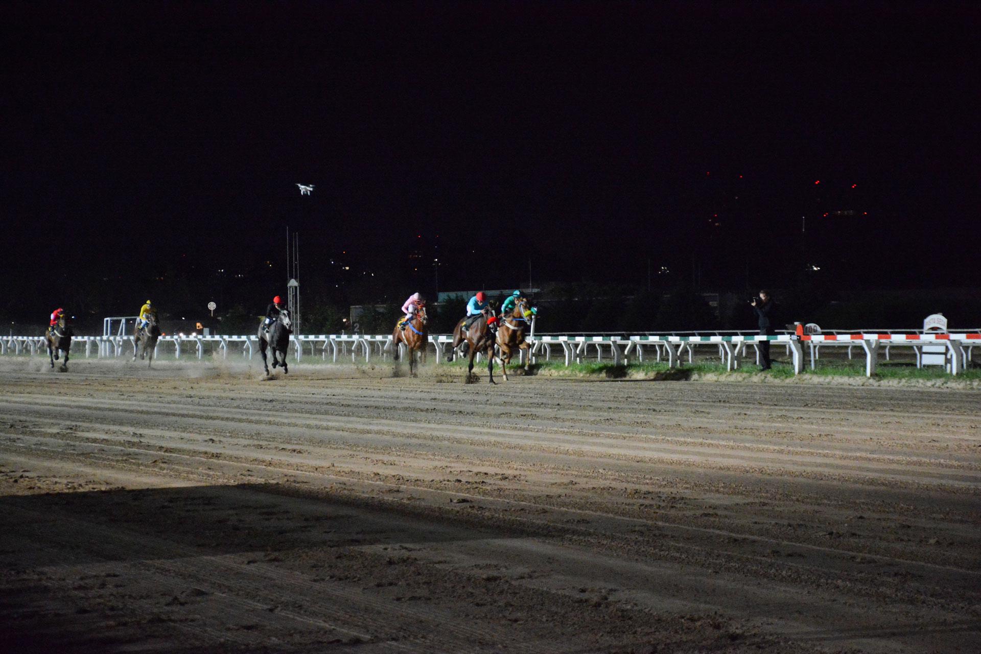Durante la velada, se corrió la tradicional carrera hípica (1400 mts) en el Hipódromo de Palermo y en la que los invitados pudieron apostar por su caballo favorito. La recaudación obtenida fue a total beneficio de la Fundación Germinare