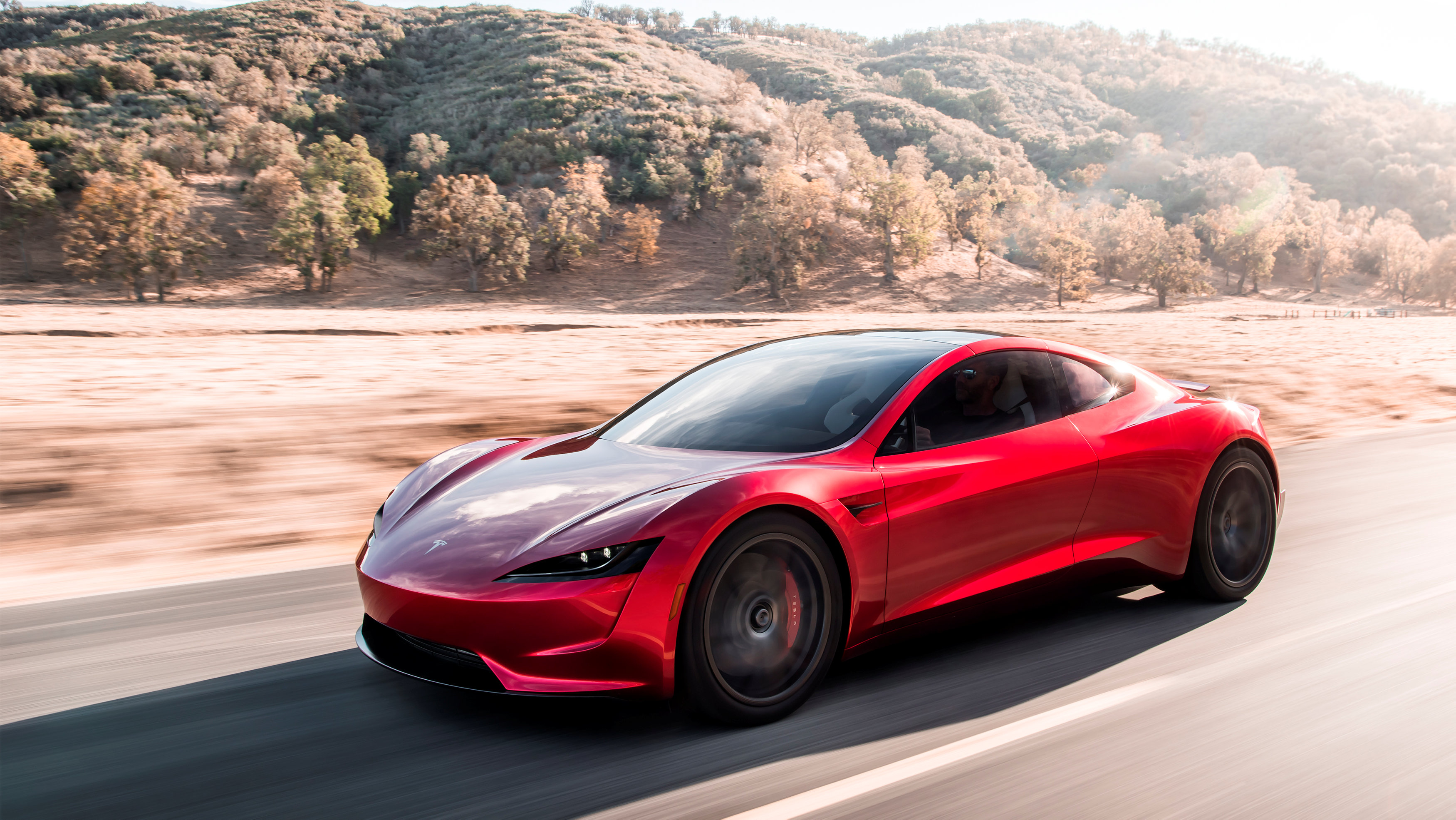 ( Tesla/Handout via REUTERS)