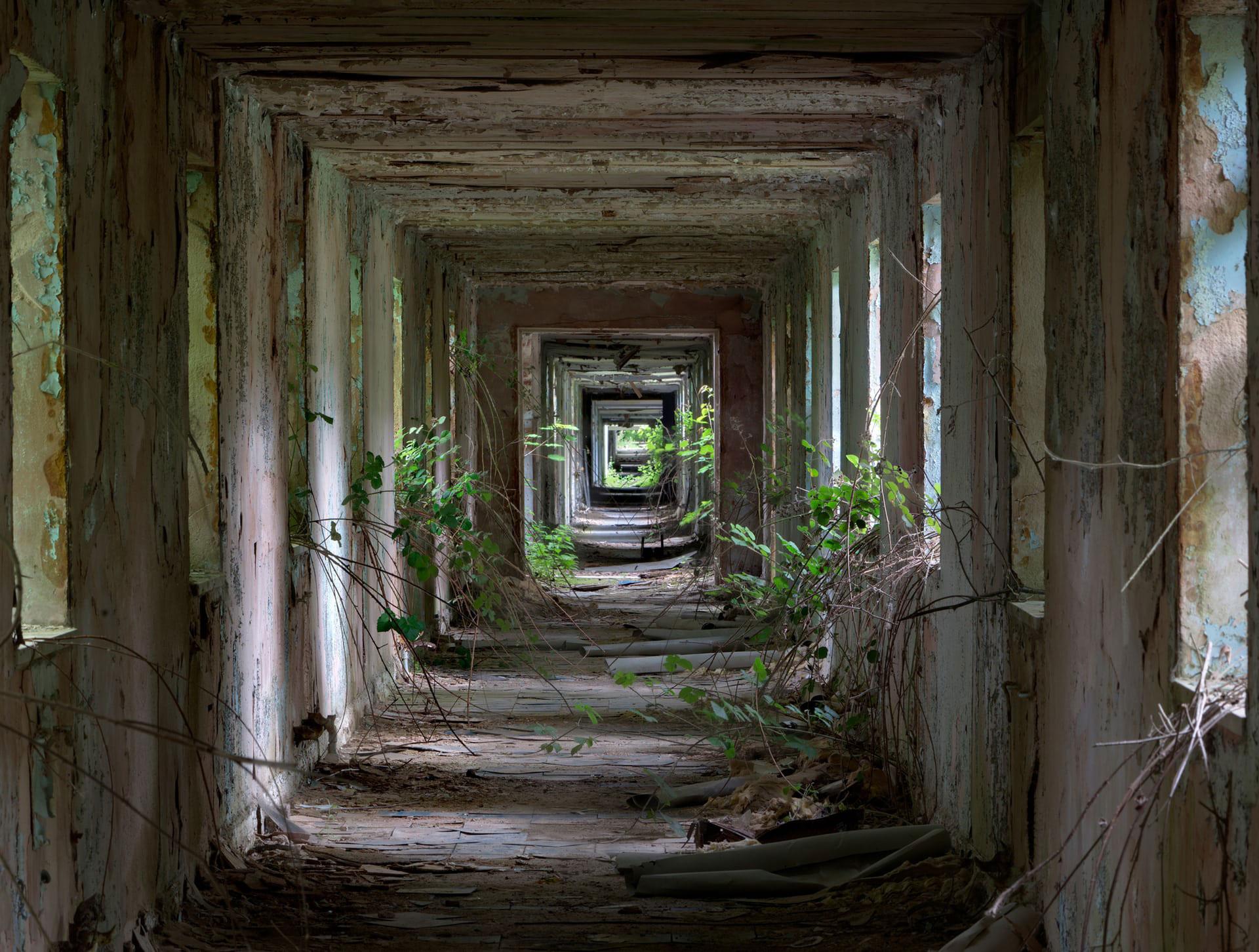 Nocton Hall Military Hospital por Matt Emmett, la fotografía ganadora