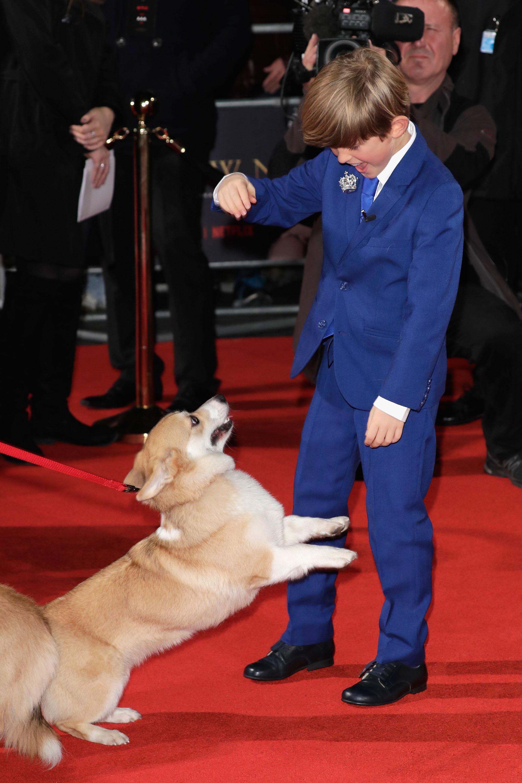 Billy Jenkins juega con uno de los perros que participaron en el rodaje
