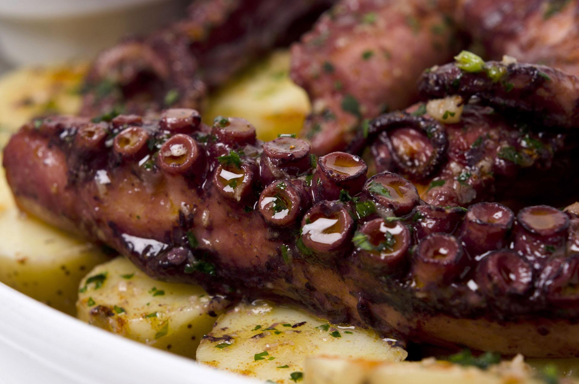 El pulpo es uno de los platos más elegidos en Nemo