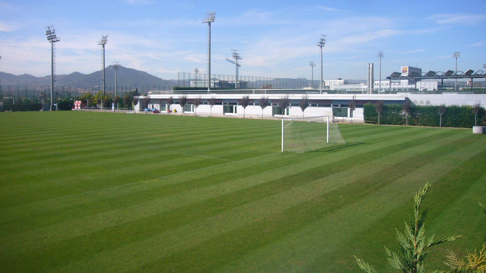 Una de las canchas de la Ciudad Deportiva Joan Gamper, donde trabajará la Selección