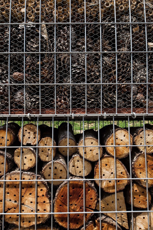 Las diversas capas que alberga están especialmente pensadas y ubicadas para atraer y resguardar a una población heterogénea de bichos