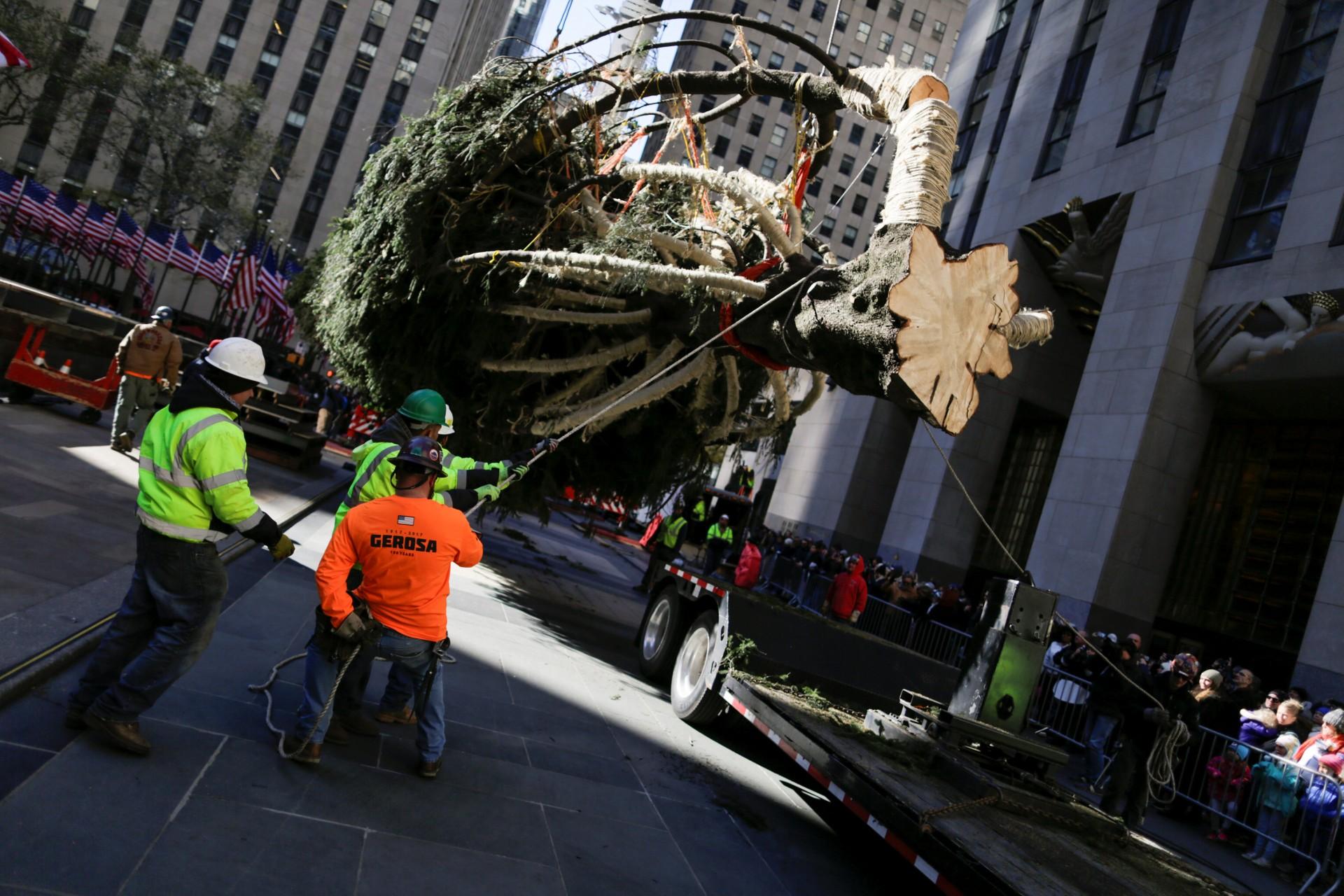 El encendido del árbol marca el comienzo de las celebraciones navideñas en la Gran Manzana