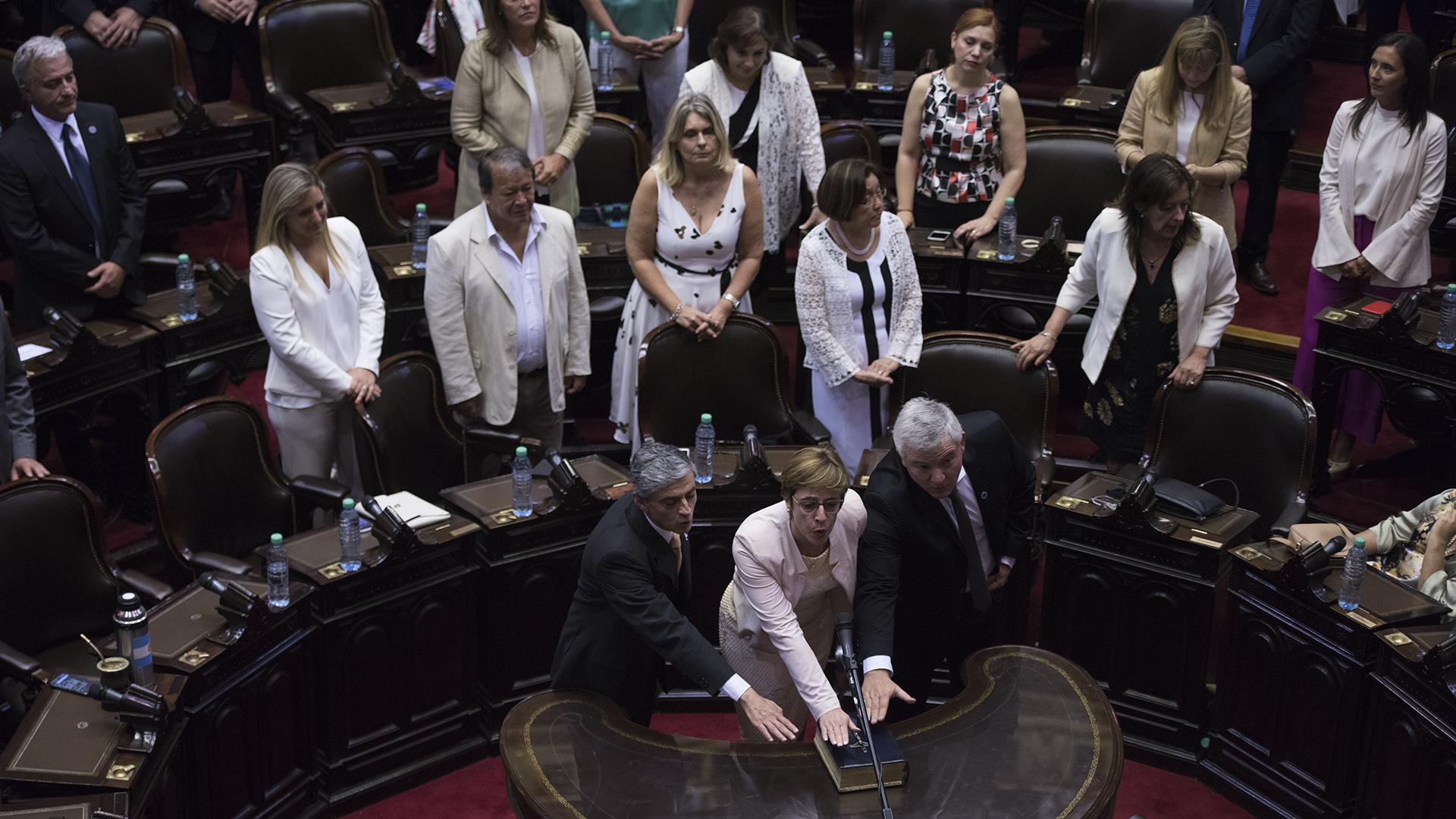 Juraron 126 diputados durante la renovación de la Cámara