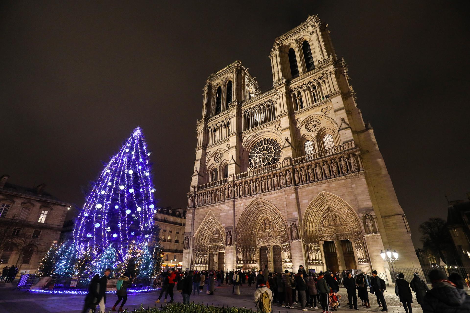 La iglesia de Notre Dame, en París, tiene un modesto ejemplar adornado de luces púrpura