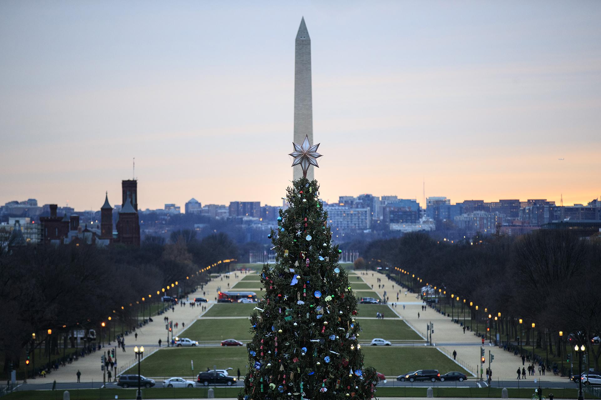 También en Washington, sede del gobierno de los Estados Unidos, los árboles gigantes se hacen presentes: el ejemplar del monumento más tradicional de la ciudad en Capitol Hill