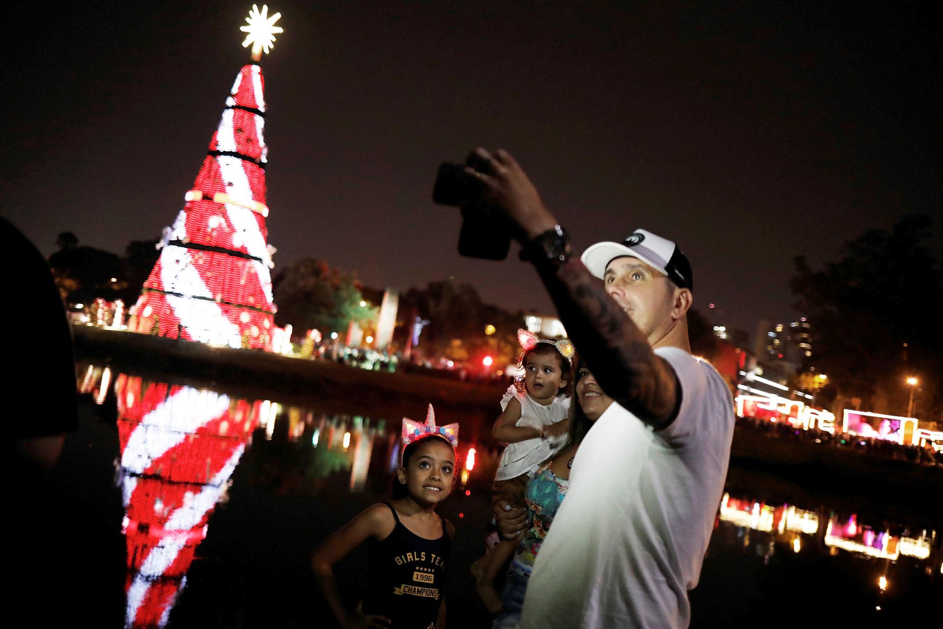 En San Pablo, Brasil, el parque de Ibirapuera es la sede del árbol más significativo