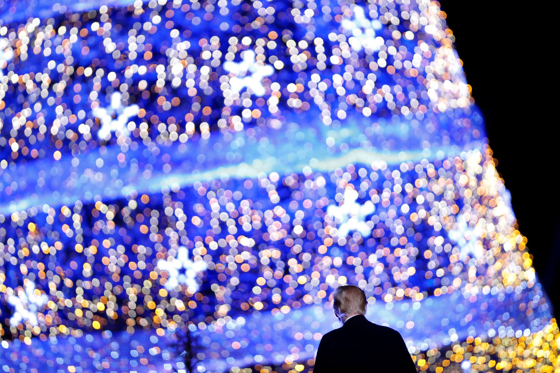 El presidente de los EEUU Donald Trump observa las luces del árbol, cerca de la Casa Blanca