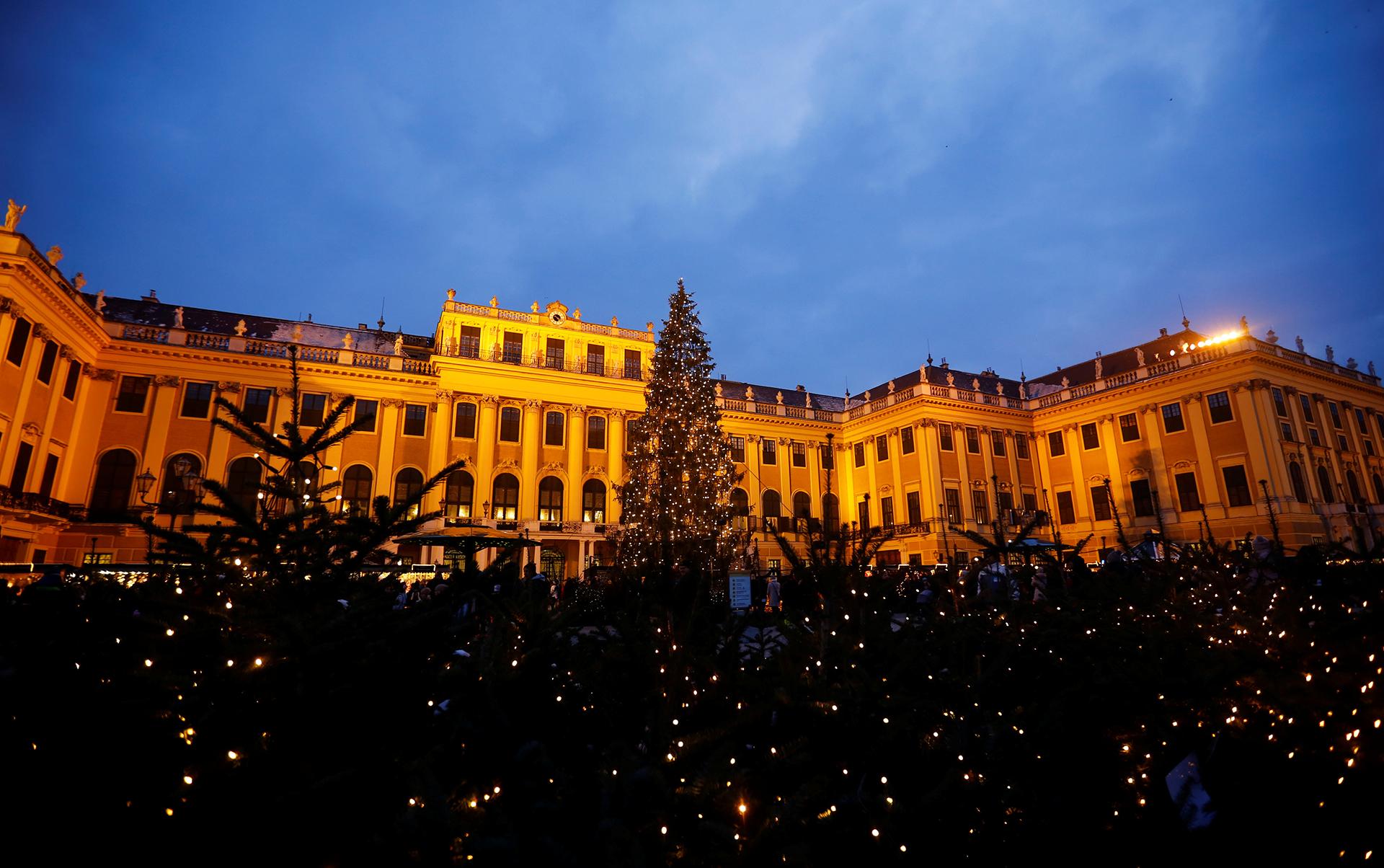 El palacio Schoenbrunn en Viena, Austria, con múltiples árboles iluminados