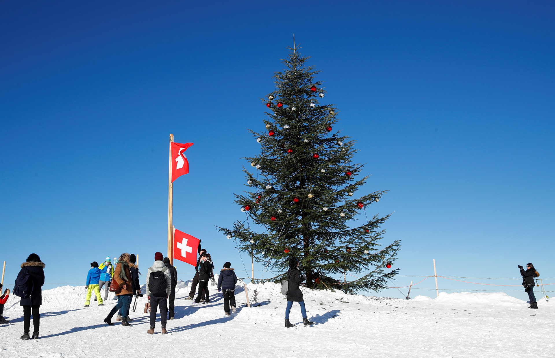 En la cima de una de las montañas nevadas de Suiza han decorado este árbol navideño para deleite de los turistas