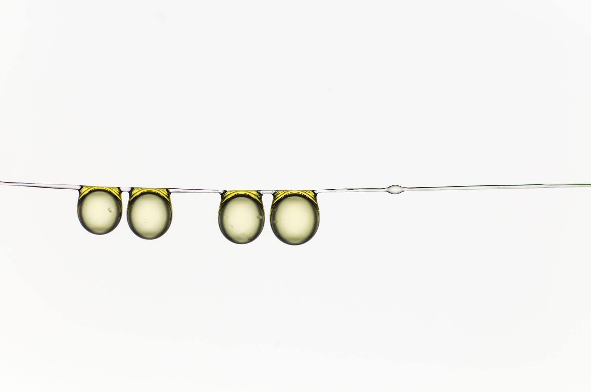 """Ganador de la categoría Microimaging. """"Familia de gotas de aceite de oliva colgando juntas"""", por Hervé Elettro"""