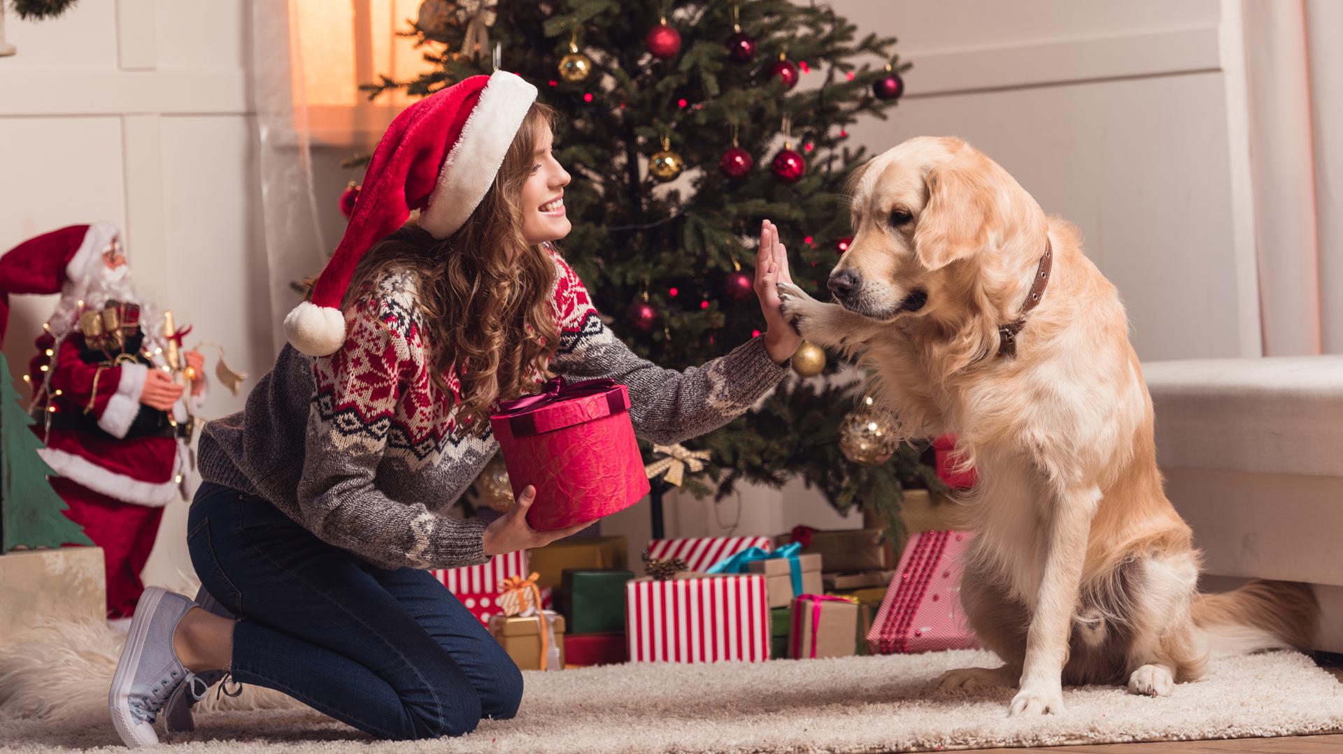 Navidad A Solas Se Puede Disfrutar De Las Fiestas En Soledad Sin Familia Y Sin Amigos Infobae