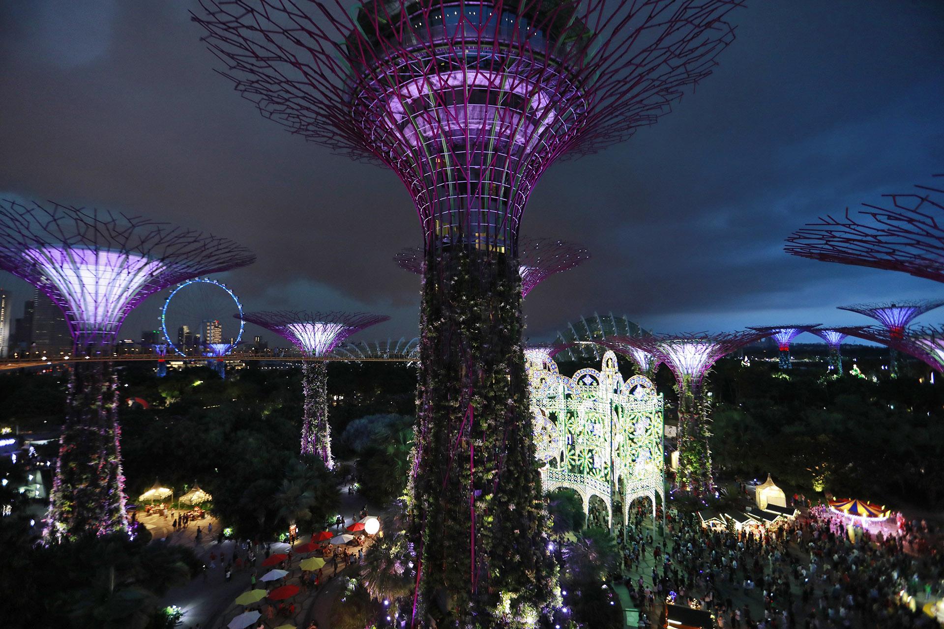 Miles de personas celebran la Navidad en Singapur