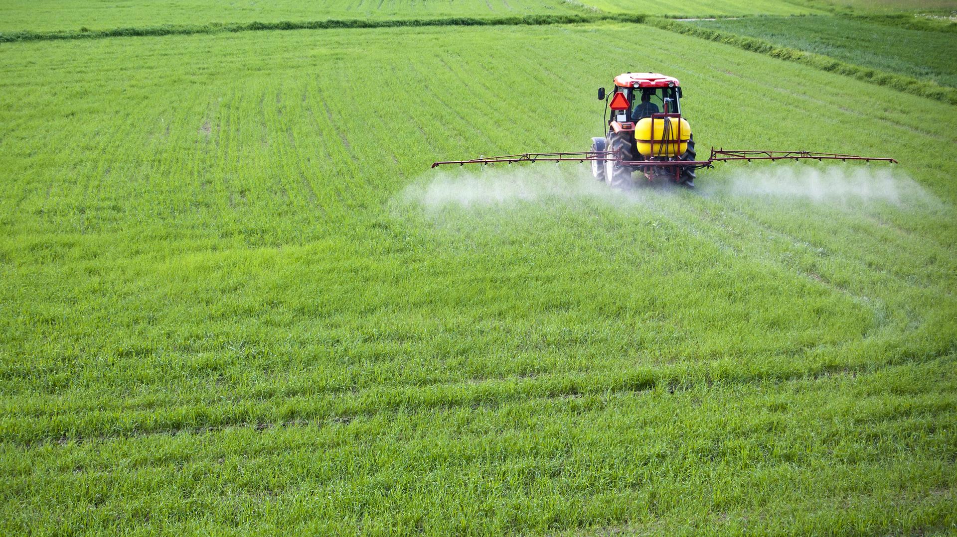Una producción eficiente tiene que ser sustentable y esto tiene que ver con una buena utilización del recurso suelo, aplicación de fertilizantes y de agua