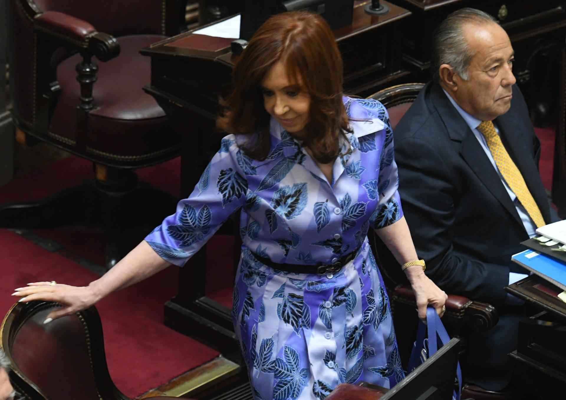La ex presidente y actual senadora Cristina Kirchner (Maximiliano Luna)