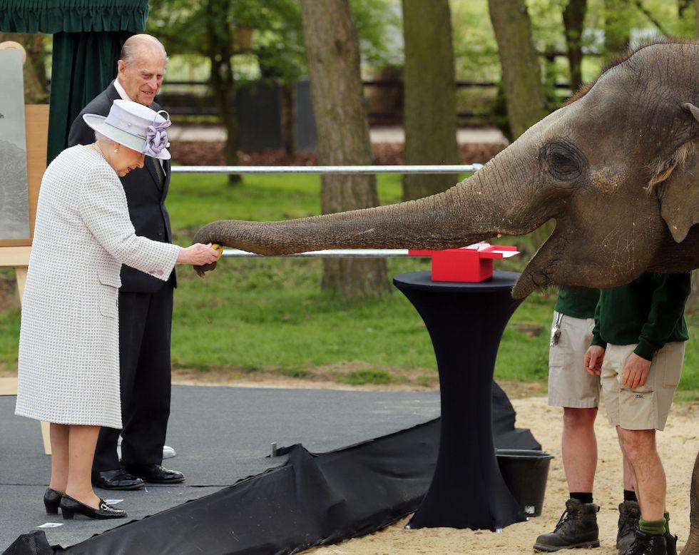 La reina Isabel con un elefante durante la inauguración de un nuevo centro para elefantes en ZSL Whipsnade (Chris Radburn/PA Wire)