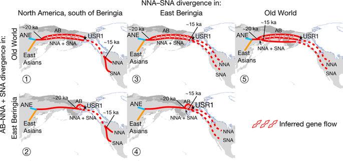 Los aptrones migratorios a América según un análisis genético