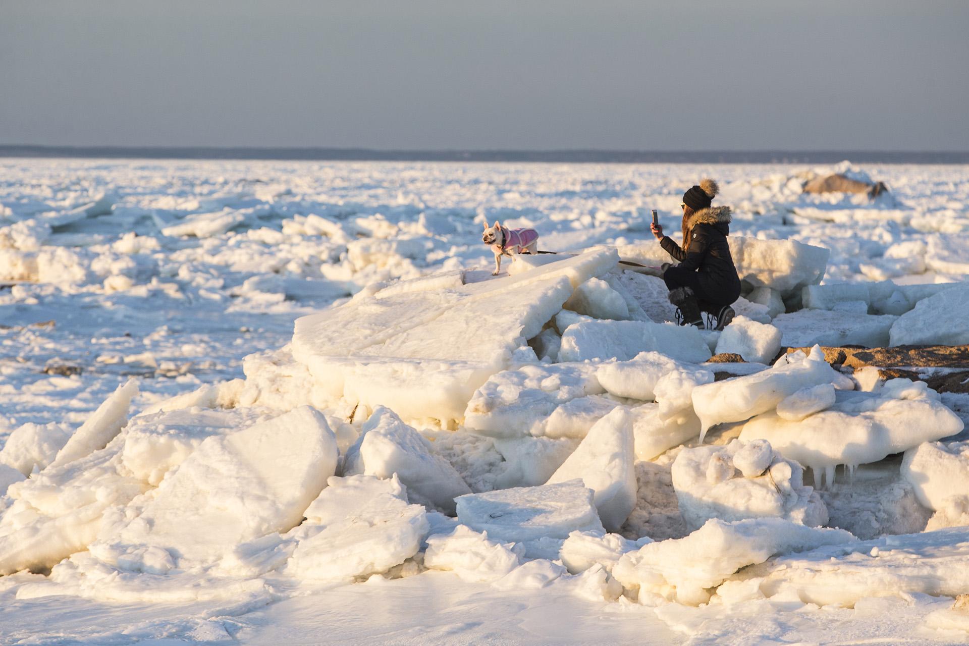Una mujer se animó a pasear con su perro en el hielo, en Orleans, Massachusetts(Scott Eisen/Getty Images/AFP)