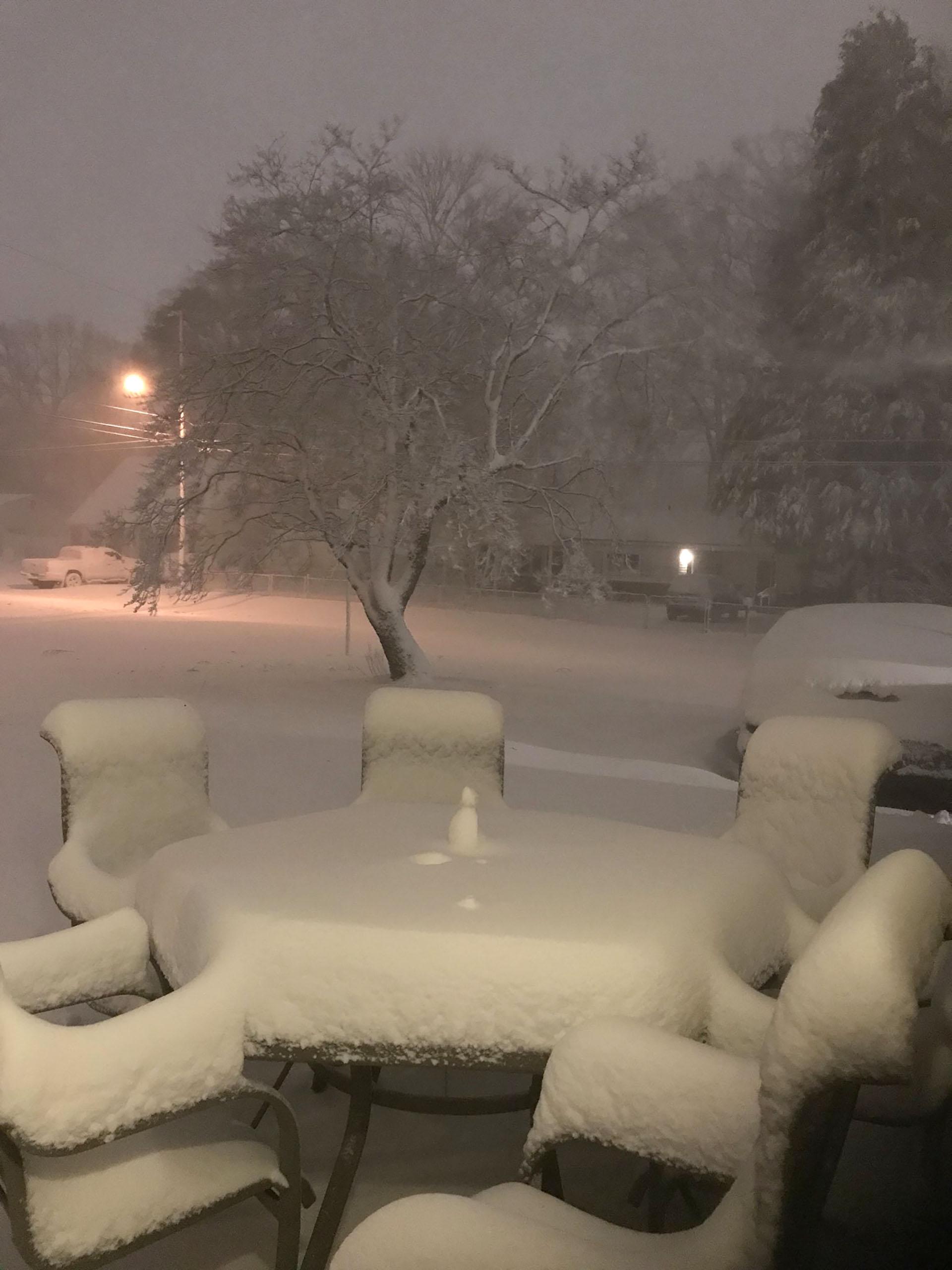 Los autos y los jardines, cubiertos de nieve en Virginia Beach