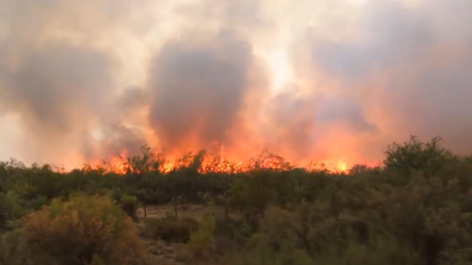 Incendios en Mendoza