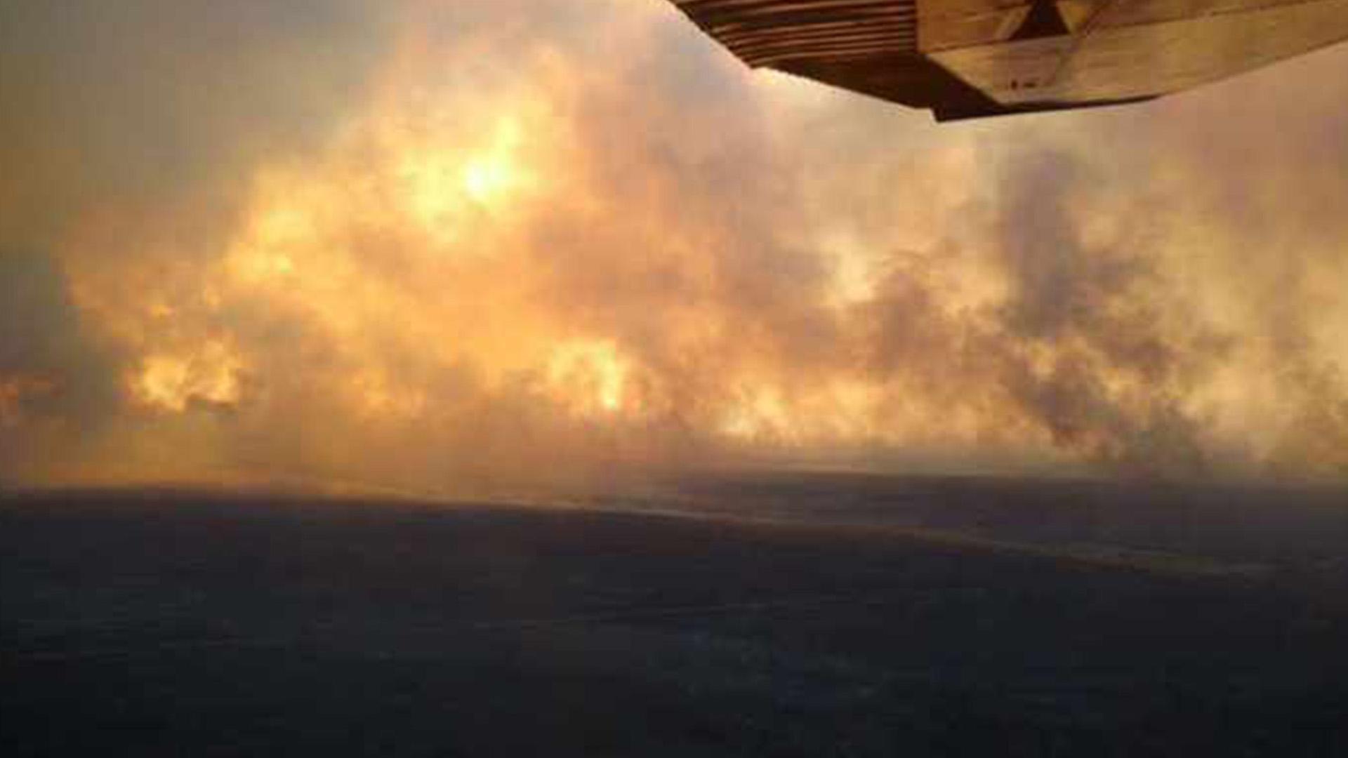 Incendios en La Pampa (Gentileza: La Arena)