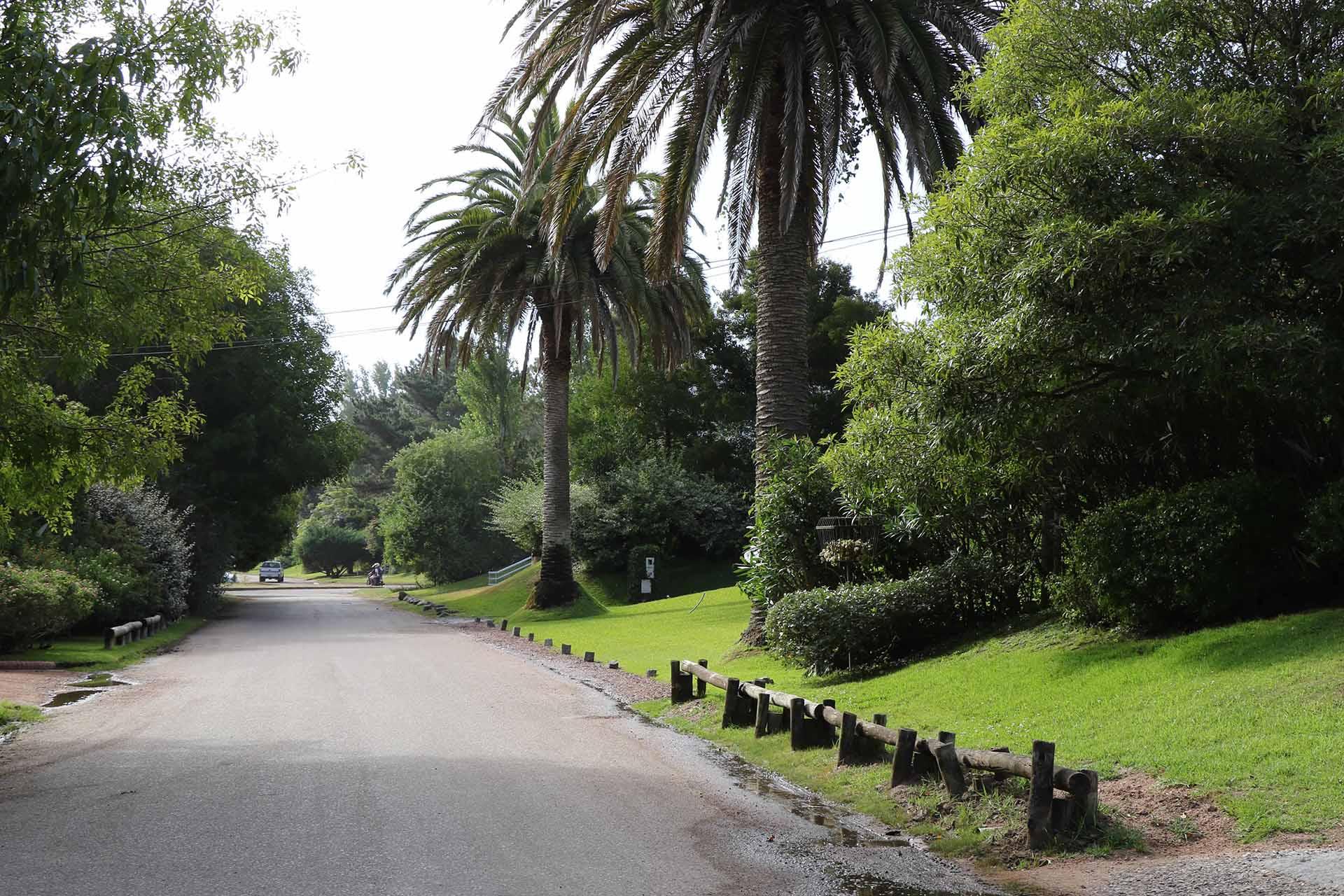 Las calles tranquilas y rodeada de vegetación crean una atmósfera de tranquilidad y paz.