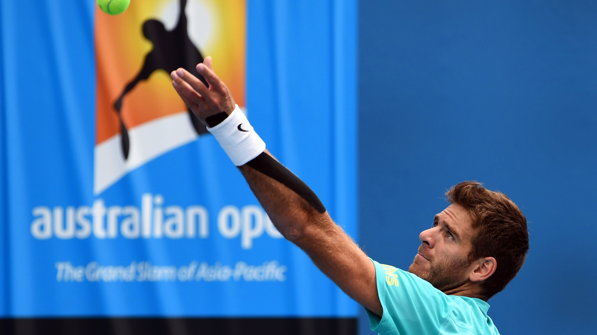 Juan Martín Del Potro (AFP/Getty Images)