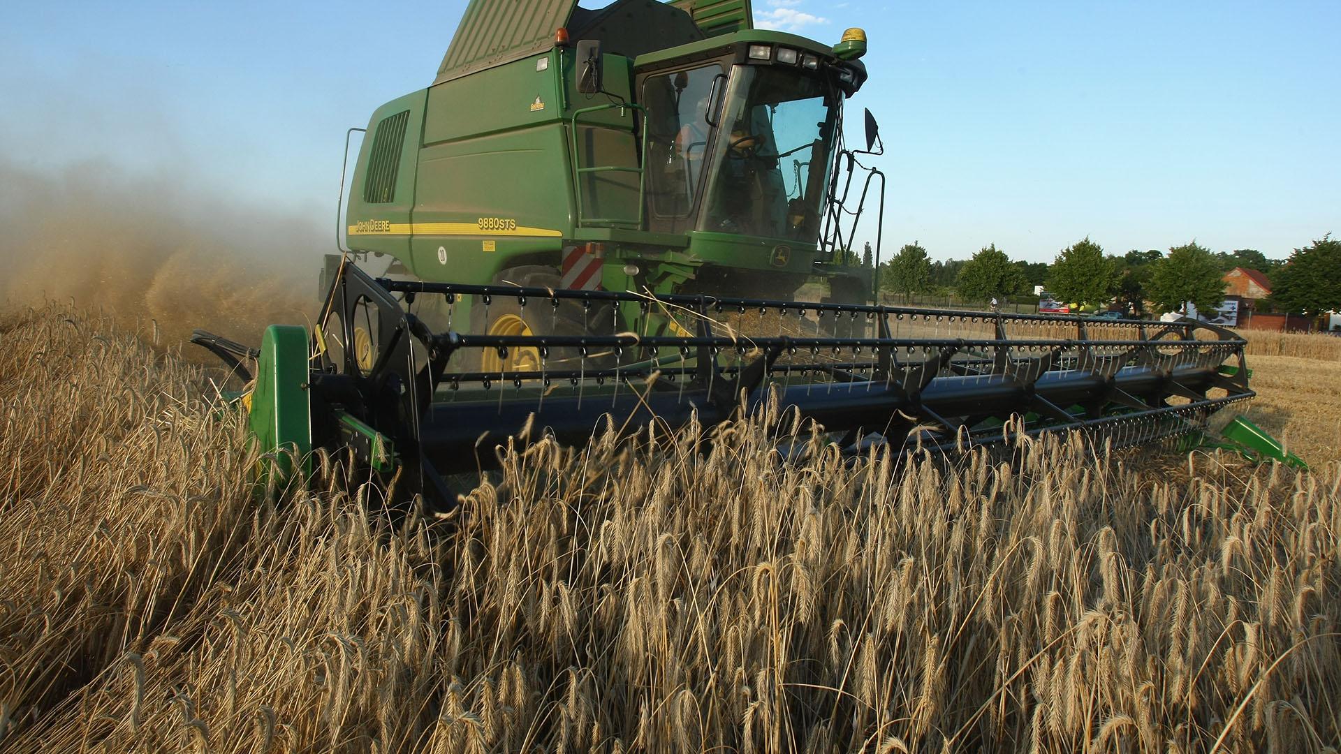 La fuerte caída interanual en el agro fue producto de la menor cosecha por la sequía (Getty)