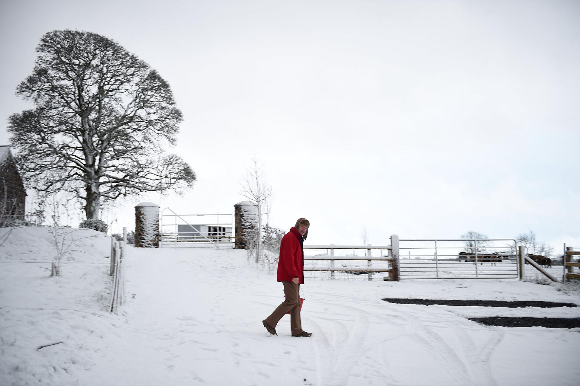 Un hombre alimenta a sus ovejas en la nieve en Hillsborough, Irlanda del Norte el 16 de enero de 2018 (Reuters)
