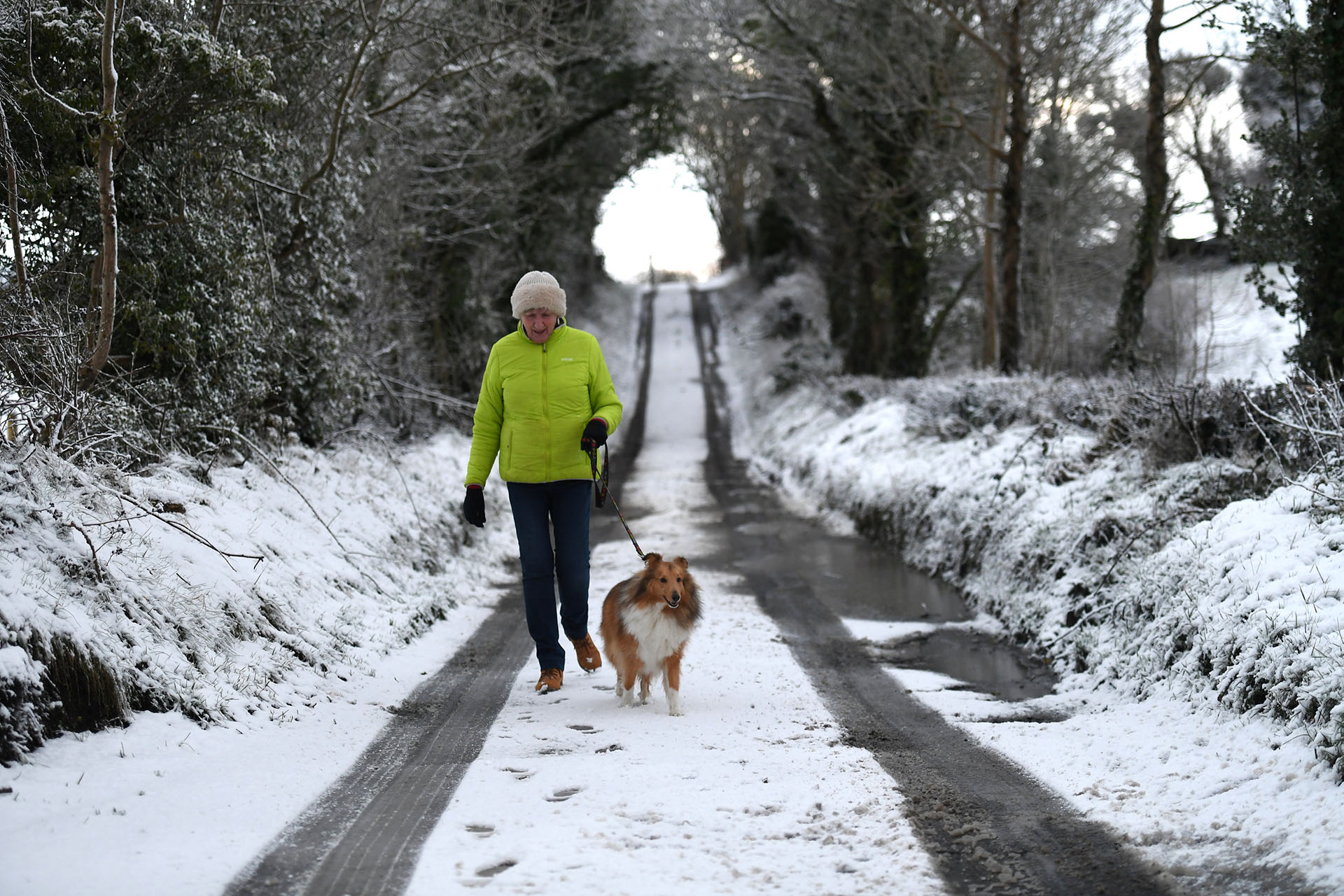 Una mujer camina a su perro en Hillsborough,Irlanda del Norte, el 16 de enero de 2018 (Reuters)