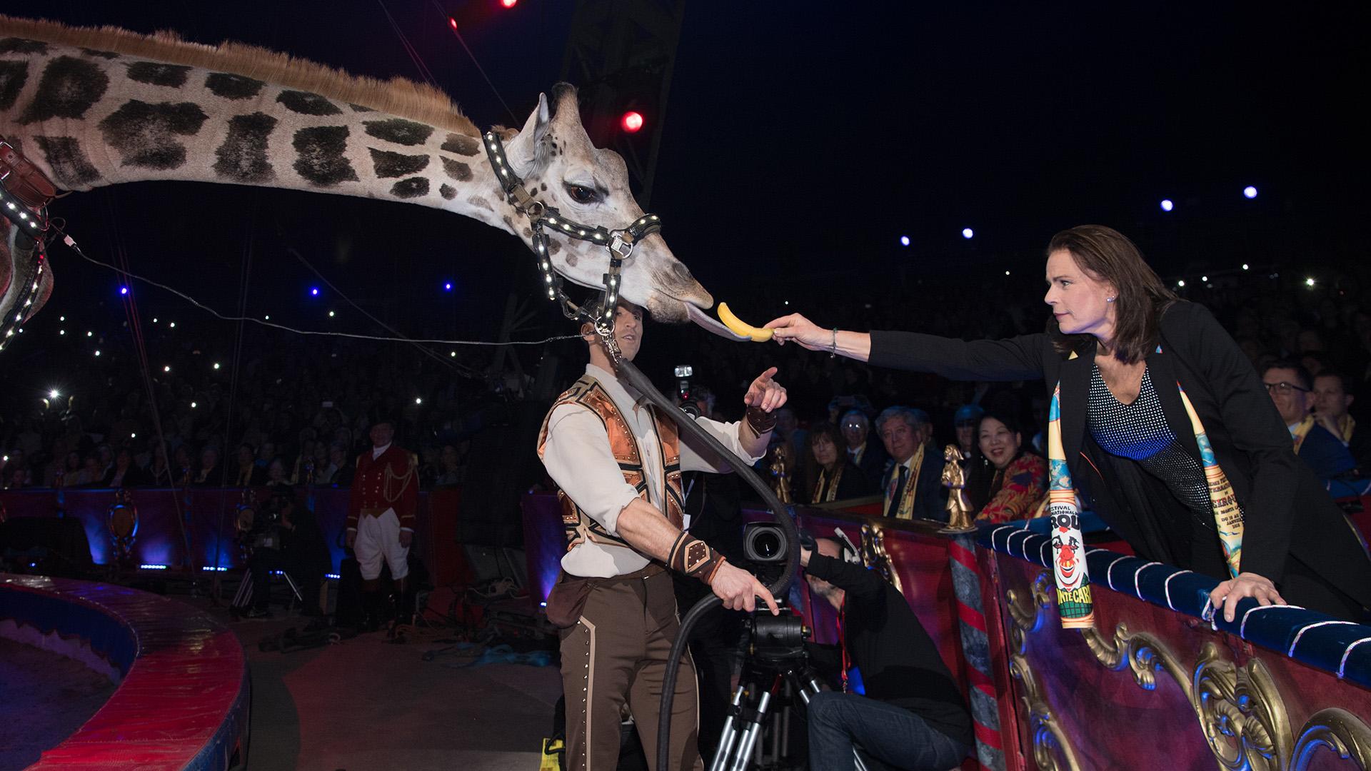 Al igual que toda su familia, Estefanía de Mónaco lleva en la sangre la pasión por el circo