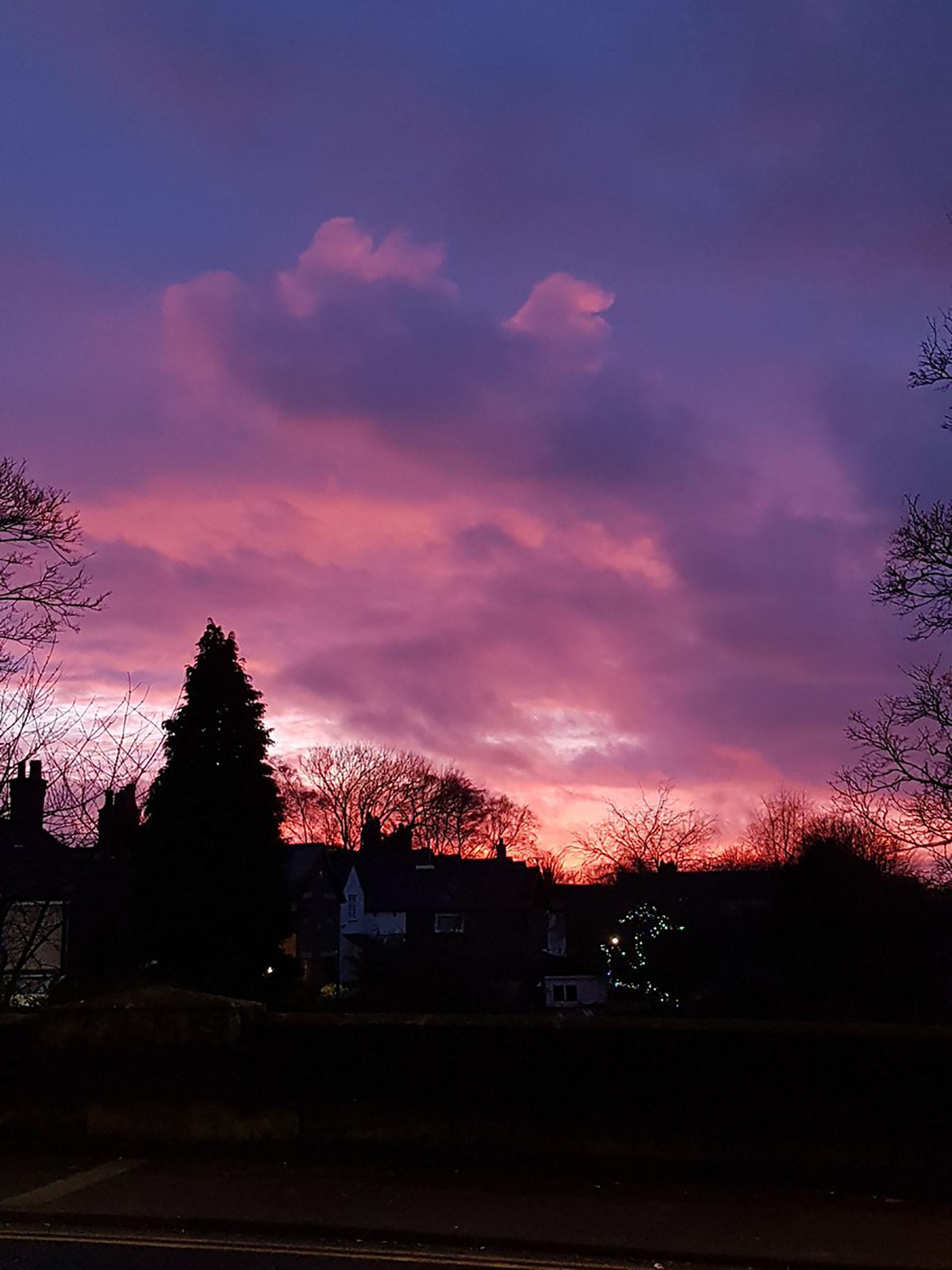La maleza mezclada con el cielo violeta de Gran Bretaña