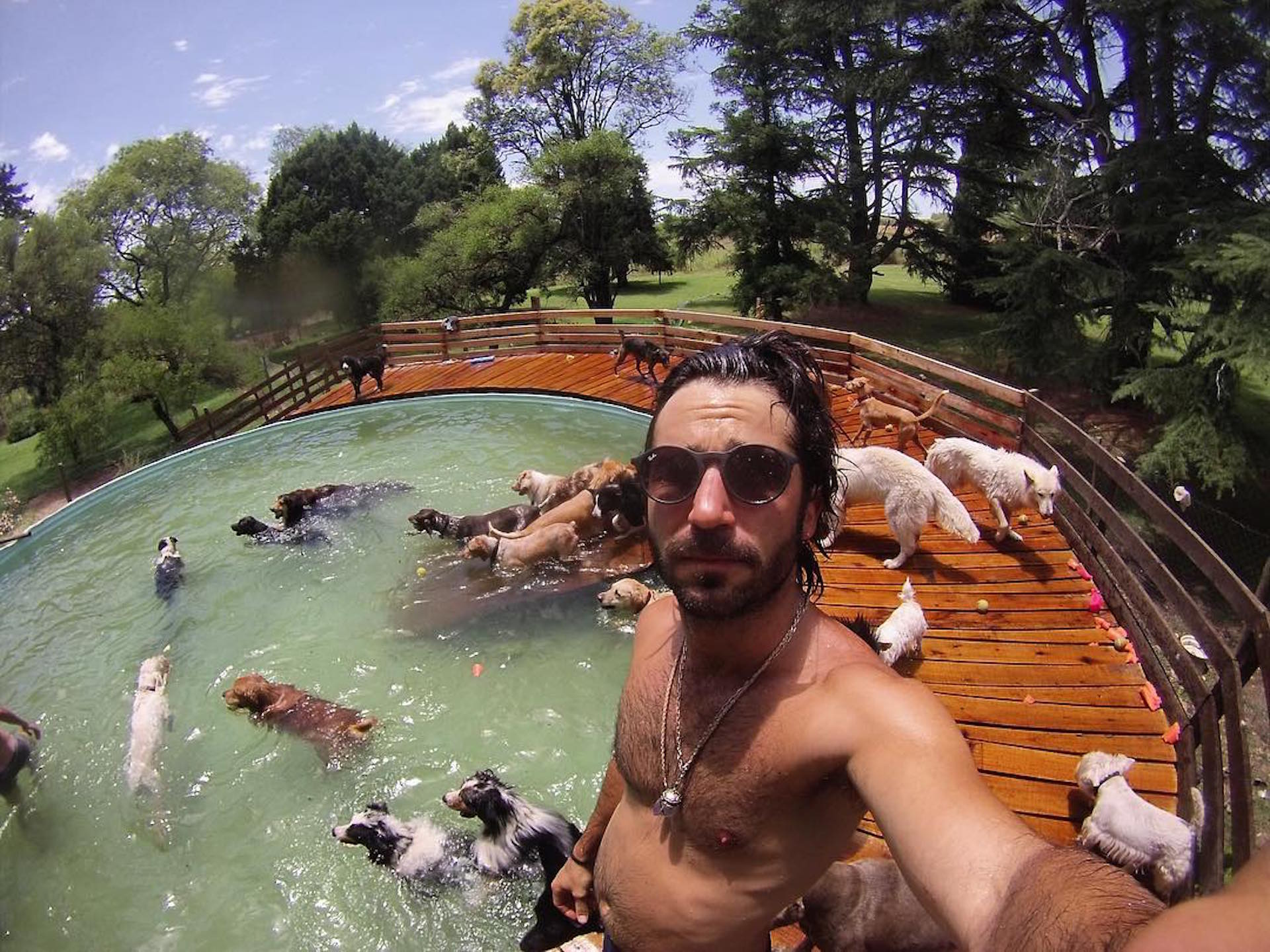 Francisco García Ibar con los perros de su refugio, La manada (Foto Instagram)